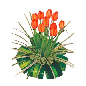 Arreglo-tulipanes
