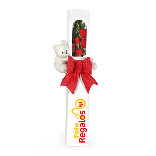 Caja-6-rosas-con-oso