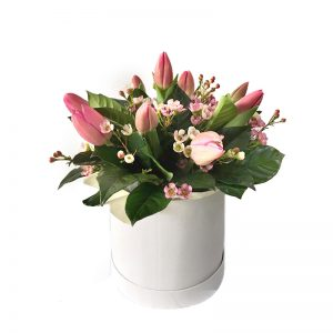 box de 10 tulipanes
