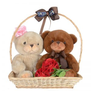 Ositos cariñosos pareja