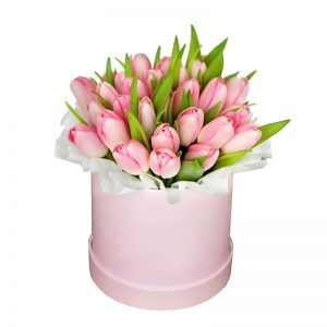 Box de 24 tulipanes